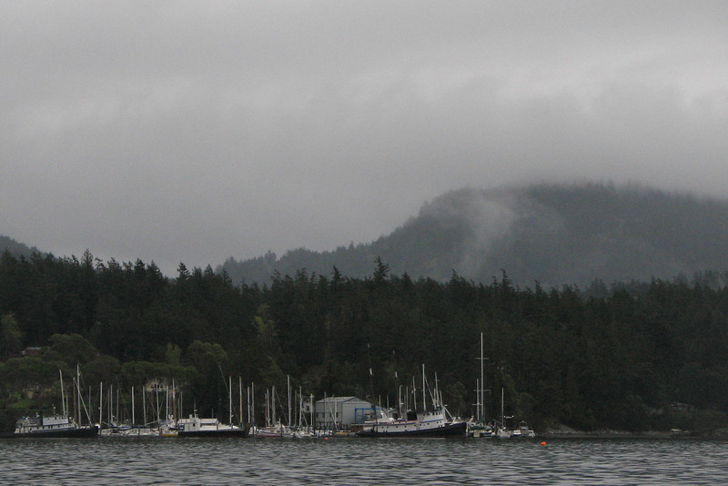 West Sound, early morning