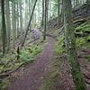 Little Summit Trail