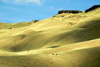 Rolling hills of Eastern Washington's wine country