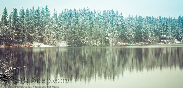 A panorama of a forest of pine trees reflecting in a lake