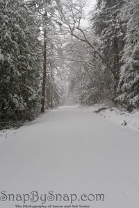 An untraveled road in winter covered in fresh snow