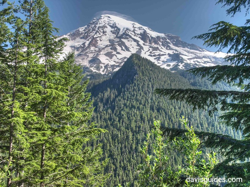 Mount Rainier from Ricksecker Point