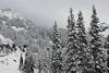 Snow on Mt. Rainier