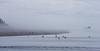 Seagulls and sea stack, Ocean Shore,  Washington