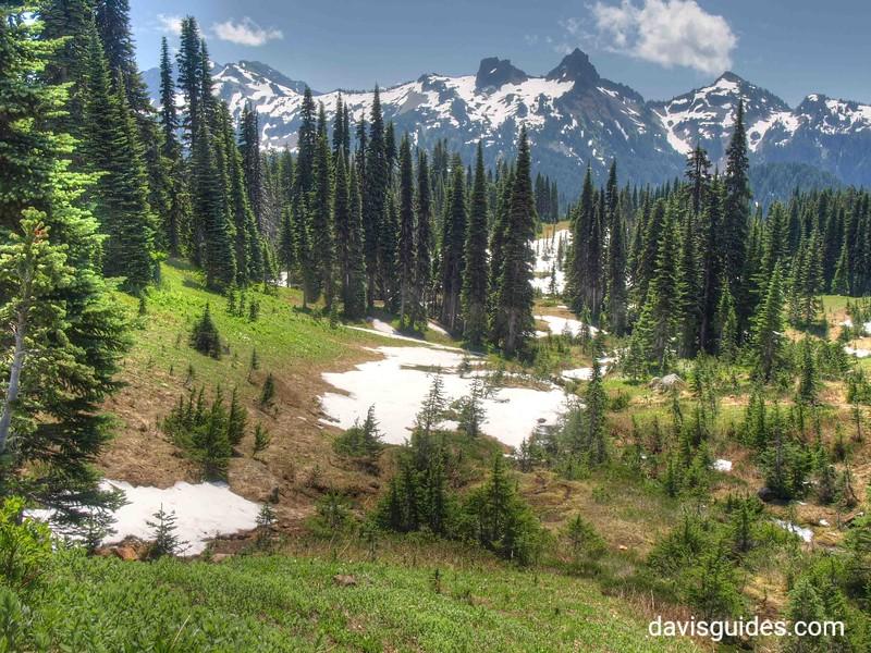 Tatoosh Range from Mount Rainier