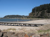This beach, at Winchester Bay on the Umpqua River estuary, has lots of amphipods.