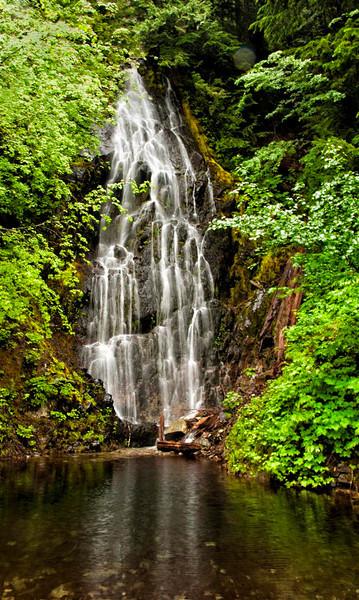 Waterfall in Mt Rainier