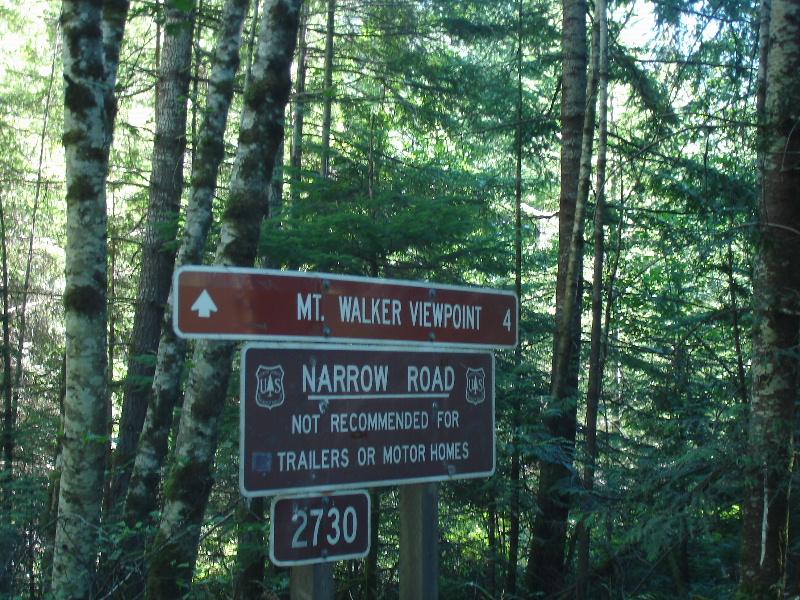 Mt Walker, Olympic National Park