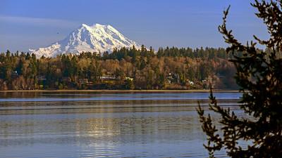 Mount Rainier from Olympia, Washington