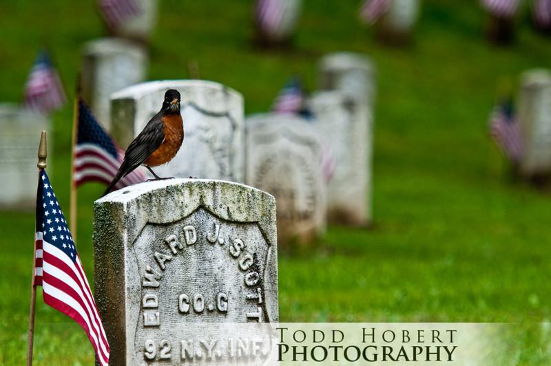 100531_Memorial_Day55