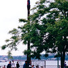Totem Pole at Waterfront - Seattle, WA  5-29-98