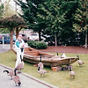 Donna with Geese at Maritime Heritage Center - Center For Wooden Boats - Seattle, WA  5-29-98