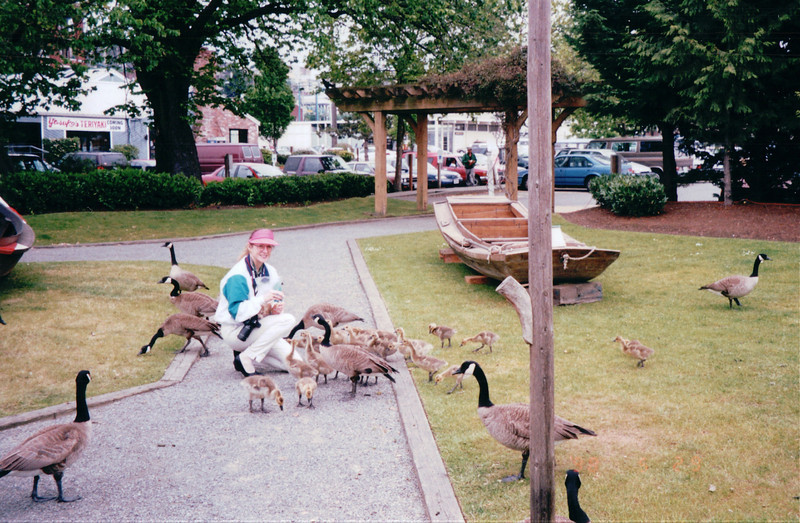 Donna Feeding Canada Geese at Maritime Heritage Center - Center For Wooden Boats - Seattle, WA  5-29-98