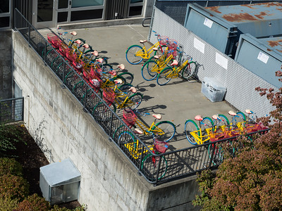 20161010.  Colorful corporate bikes from Fremont Bridge, Seattle WA.
