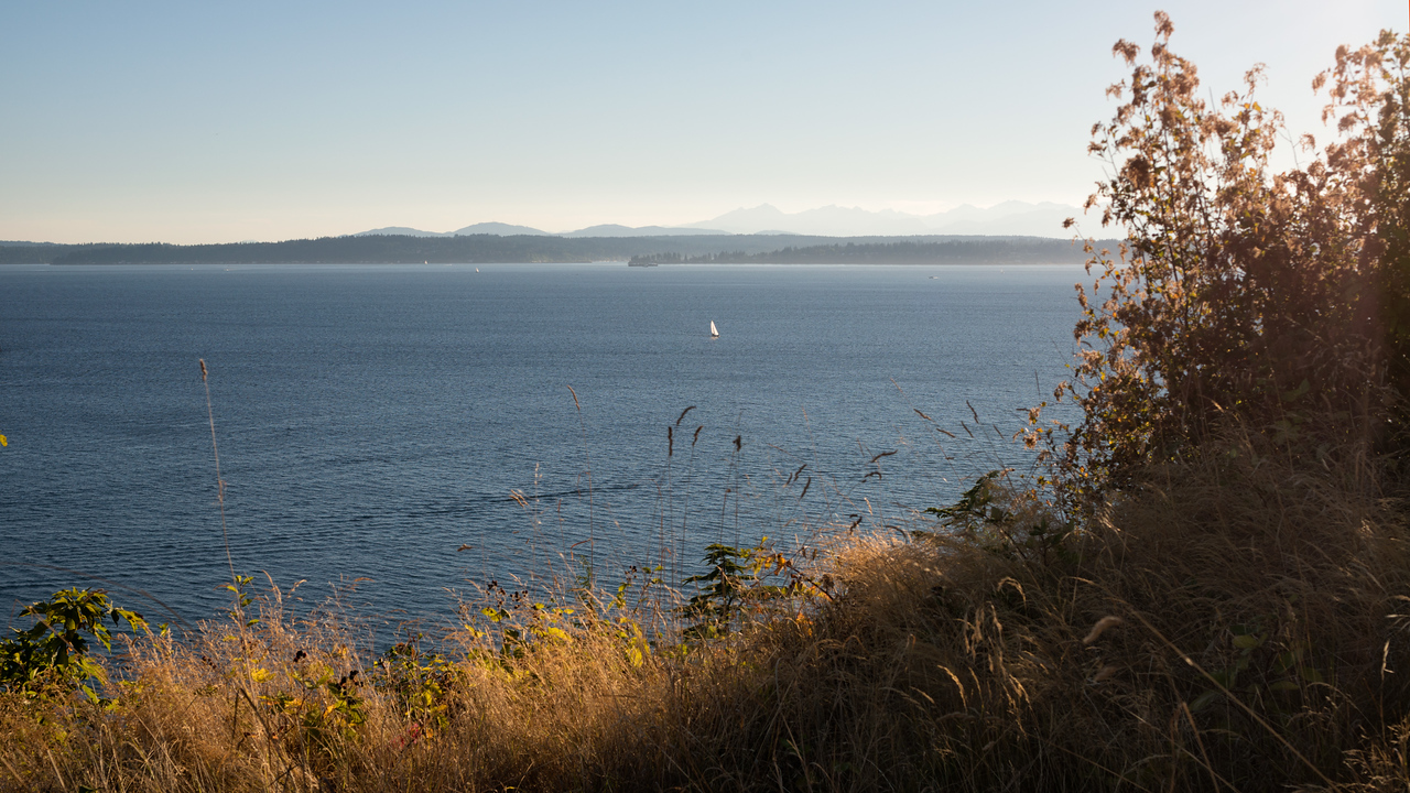 20160724.  Puget Sound and Olympic Mountains from Magnolia Blvd. W., Seattle WA.
