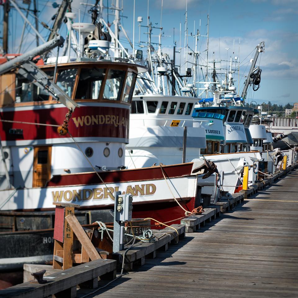 20160908.  Fisherman's Terminal on Washington Ship Channel, Port of Seattle, Seattle WA.
