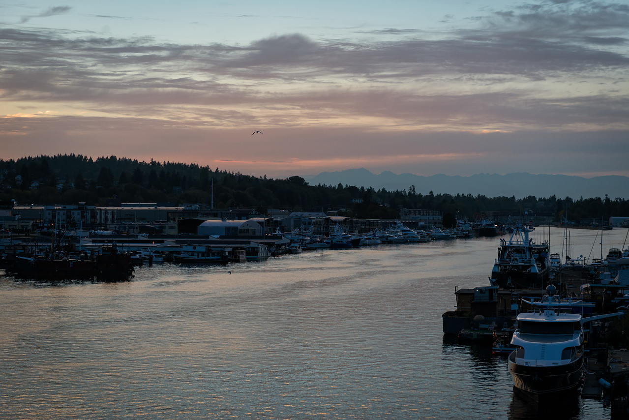 20160929.  Fisherman's Terminal harbor on Lake Washington Ship Channel, Seattle WA.  Photo taken from Ballard Bridge.