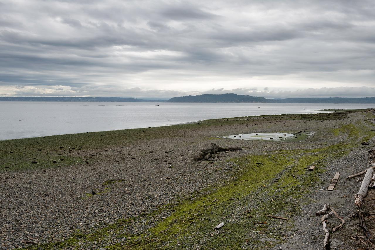 20160722.  View of southwest shoreline of Alki, Seattle WA.