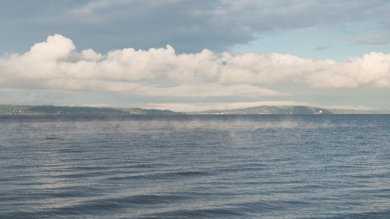 20151222.  View across Puget Sound from Carkeek Park, Seattle WA.