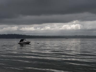 20150815.  Puget Sound southwest of Dolphin Point, Vashon Island, WA.