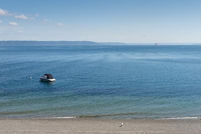 20150816.  Puget Sound southwest of Dolphin Point, Vashon Island, WA.