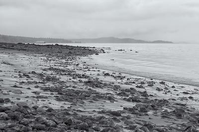 20150815.  Dolphin Point beach, Puget Sound, Vashon Island, WA.