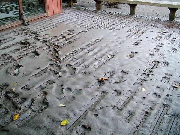 Washington Flood