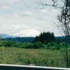 Mt. St. Helens - Castle Rock, WA - May 1998