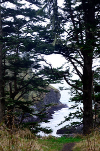 Dead Man's Cove - Cape Disappointment - Washington Travel Photography - USA