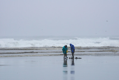 Clam Diggers - Long Beach - Washington Travel Photography - USA