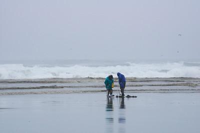 Clam Diggers - Long Beach - Washington Travel Photography - USA