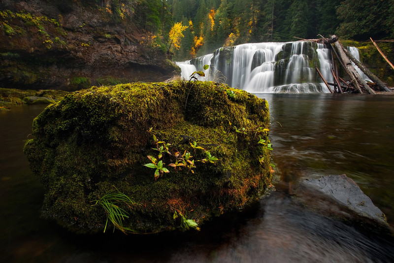 Autumn, Lower Lewis Falls, Washington