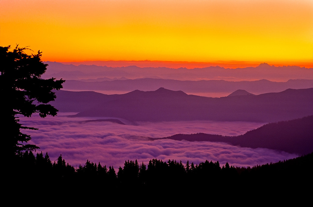 Sunrise above the clouds, Clearwater Wilderness, Washington