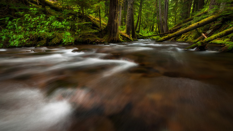 Panther creek, Washington <br /> <br /> © Douglas Remington - Ethereal Light® Photography, LLC. All Rights Reserved. Do not copy or download