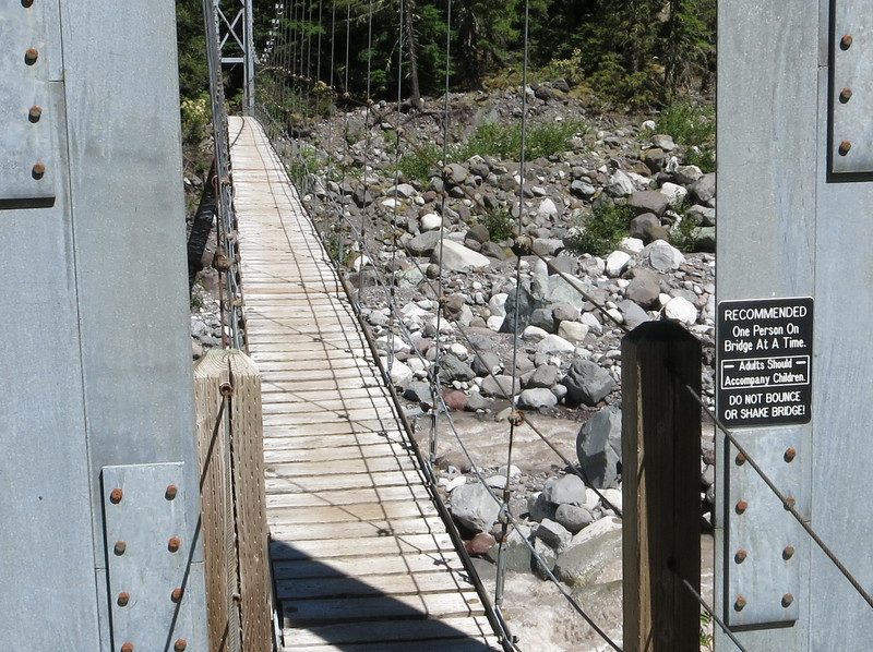 I continued down to cross the Carbon River on this bouncy bridge.