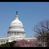 _MG_5584_Capitol_5x7