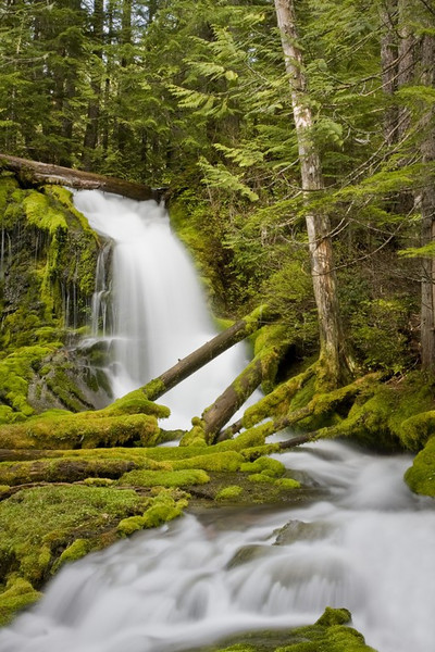 Another stream in the wilderness of Mount Adams