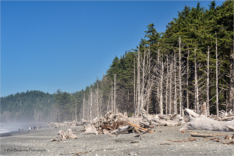 Rialto Beach area shoreline with tourists and beach logs.