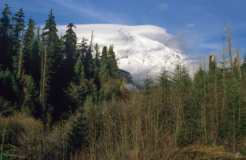 Mount Rainier - January 1990