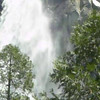 Bridal Veil Fall in Yosemite