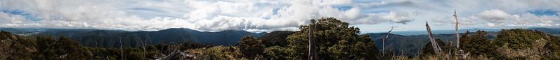 Marchant Track - Tararua Forest