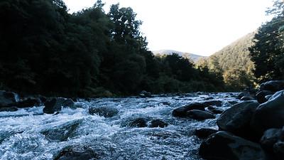 Kaitoke Regional Forest Park