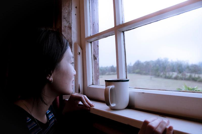 Jess looking at mo mo cows.