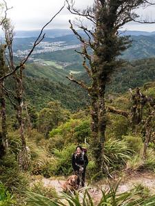 Whakanui Track - Views over Wainuiomata