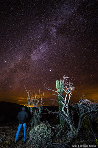 Star gazing is easy in KOFA.