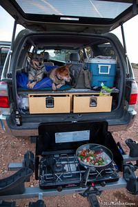 I found out that my cookstove fits perfectly onto my bike rack! Holly and Clawdia have never been given table scraps so camping with these two is MUCH different than camping with my food-crazed Boojum and Joopiter.  But...   I was missing my two old kids.