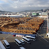 View of the city, tour motorcoaches waiting for cruise passengers, and timber logs waiting for shipment at the port of Wellington, New Zealand.