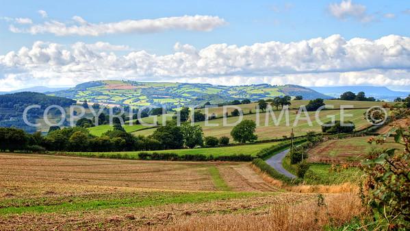 View towards Edmund's Tump (centre) from Pembridge Castle on the Broad Oak Rd