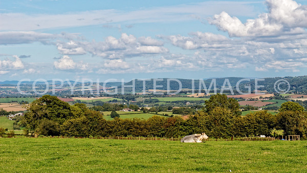 View towards the Malvern Hills and Ross-on-Wye from St Wulstan's Farm