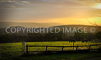 Late Autumn Landscape, South Herefordshire, view looking south east